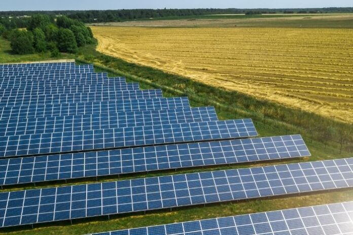 hundreds of ground solar panels in a large field