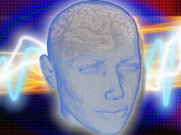 drawing of a human head with some transparency to see the brain