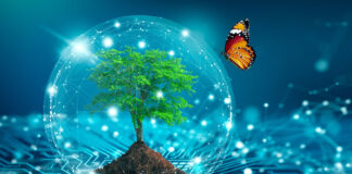 tree and butterfly cohabiting with a circuit board representing green tech